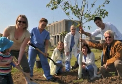 Journée de l'arbre en santé
