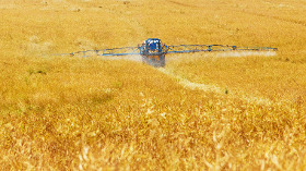 conséquences sanitaires de l'insécurité alimentaire les changements climatiques