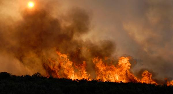 Image feux de forêt